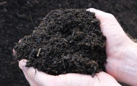 Biosolids composting with less odor in California