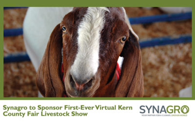 Synagro to Sponsor First-Ever Virtual Kern County Fair Livestock Show